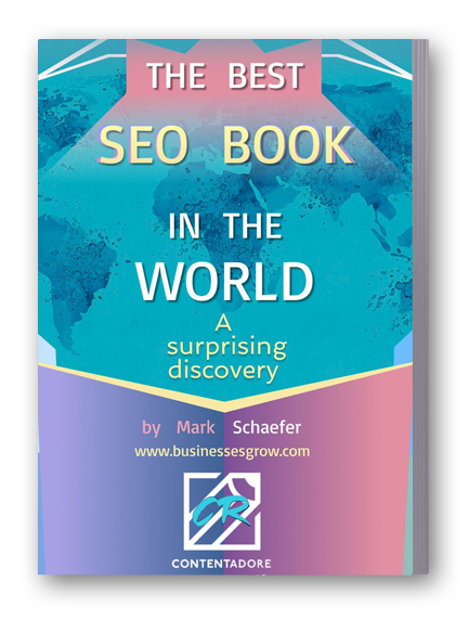The Best Seo Book in the World